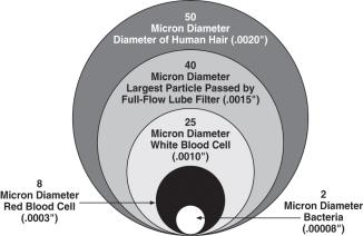 MicronIllustration